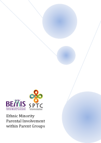 Ethnic Minority Parental Involvement within Parent Groups